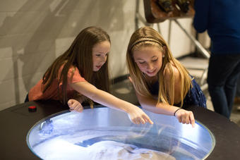 Tectonic Basin at the Fleet Science Center