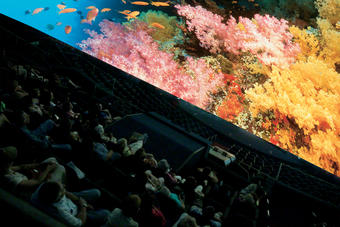 Heikoff Giant Dome Theater featuring the IMAX® film, Coral Reef Adventure