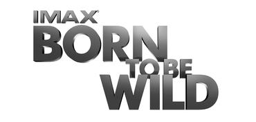 Born To Be Wild logo