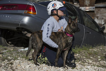 Halo and her human partner, Fire Captain 'Cat' Labrada of Miami-Dade Fire Rescue, forge a remarkable bond as they train together over 2 years to become a FEMA-certified K9 Search and Rescue team with Florida Task Force 1.