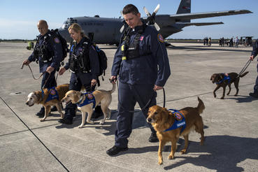 Join Florida Task Force 1, a Federal Emergency Management Agency's Urban Search and Rescue Response team, deploy to catastrophic events such as hurricanes, mudslides and terrorist attacks, bringing their canine partners along to save lives.