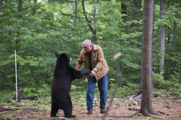"BEN KILHAM, Ph.D. (Independent Wildlife Biologist/Black Bear Behavior) with an orphaned Black Bear cub at the Kilham Bear Center in Lyme, NH as seen in the new IMAX® film, ""PANDAS,"" an IMAX Entertainment and Warner Bros. Pictures release. Photo by Drew Fellman"