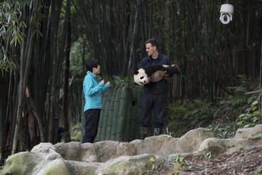 "(L-R) HOU RONG (Director of Research at Chengdu Panda Base) talks with DR. JAKE OWENS, Ph.D. (wildlife conservation biologist) as he holds a Giant Panda cub at Panda Valley in Dujiangyan, China as seen in the new IMAX® film, ""PANDAS,"" an IMAX Entertainment and Warner Bros. Pictures release. Photo by Drew Fellman"