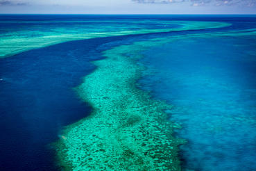 The vibrant corals stretch along the Great Barrier Reef on Australia's Eastern coast